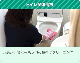 トイレ全体清掃:水あか、黄ばみもプロの技術でクリーニング